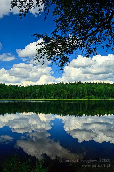 Leśne jeziorko na Mazurach