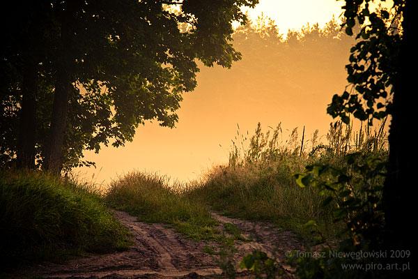 Wschód słońca na Warmii - droga