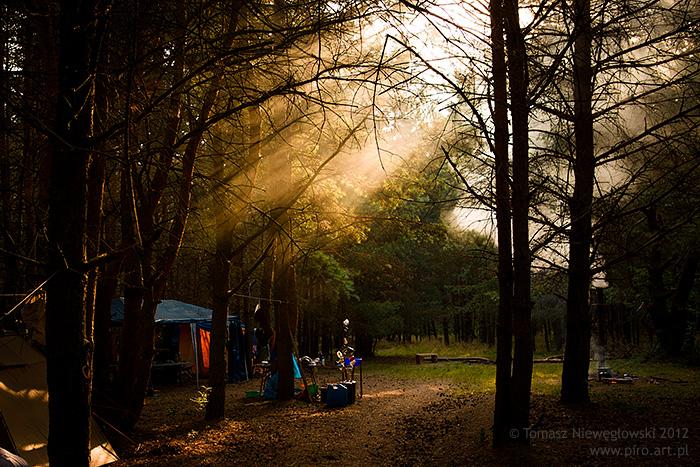 Wschód słońca w obozie w lesie