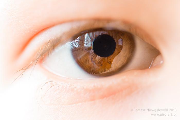Canon 100mm macro - oko
