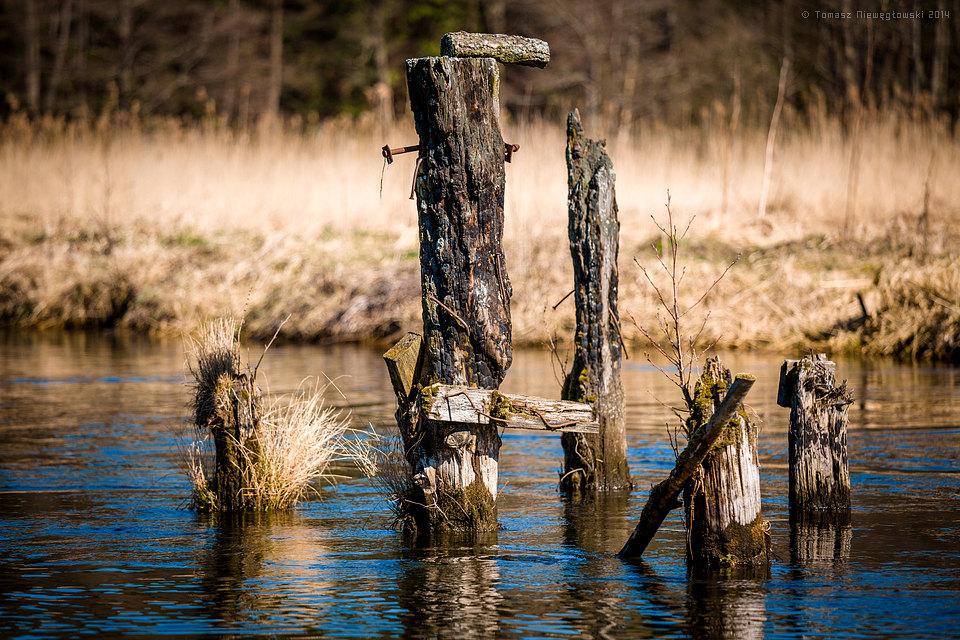 Łyna, Warmia, wiosna, rzeka, resztki mostu