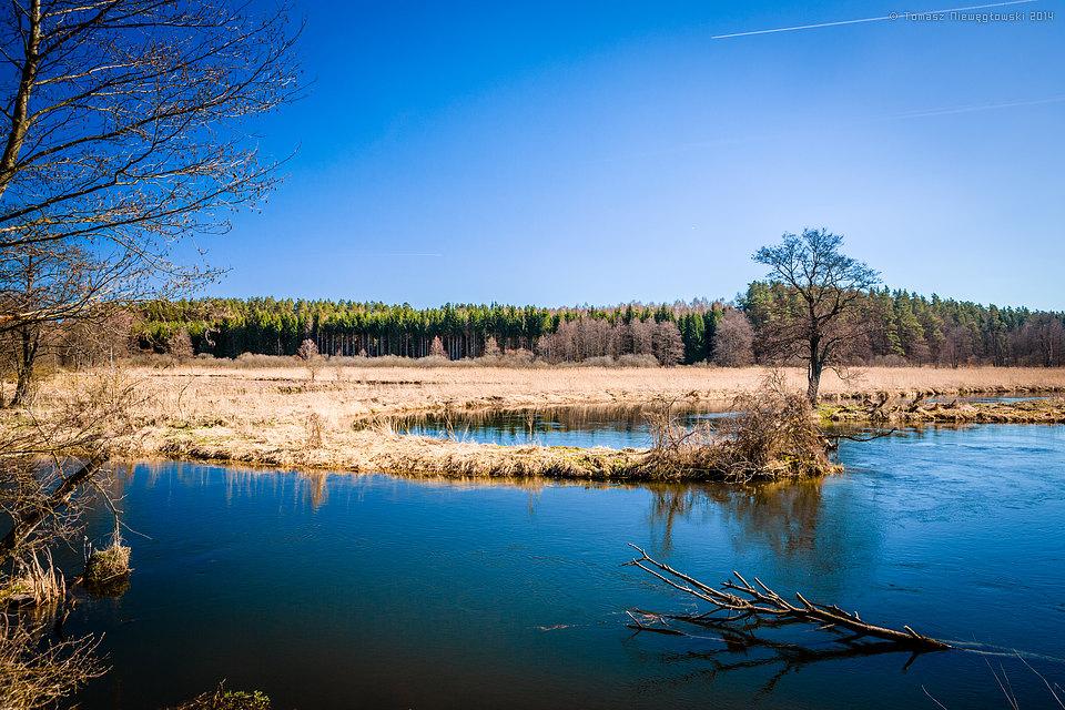 Łyna, Warmia, wiosna, rzeka