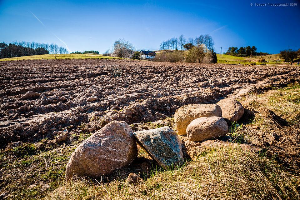 Zaorane pole wiosną na Warmii