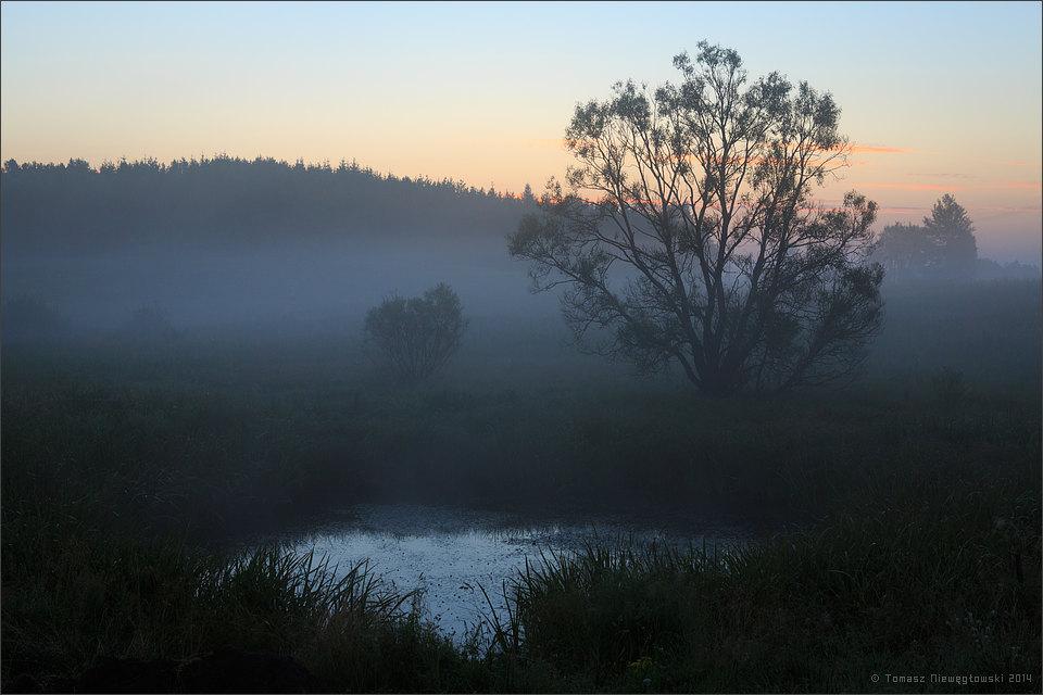 Mgły nad stawem przed wschodem słońca na Mazurach Garbatych