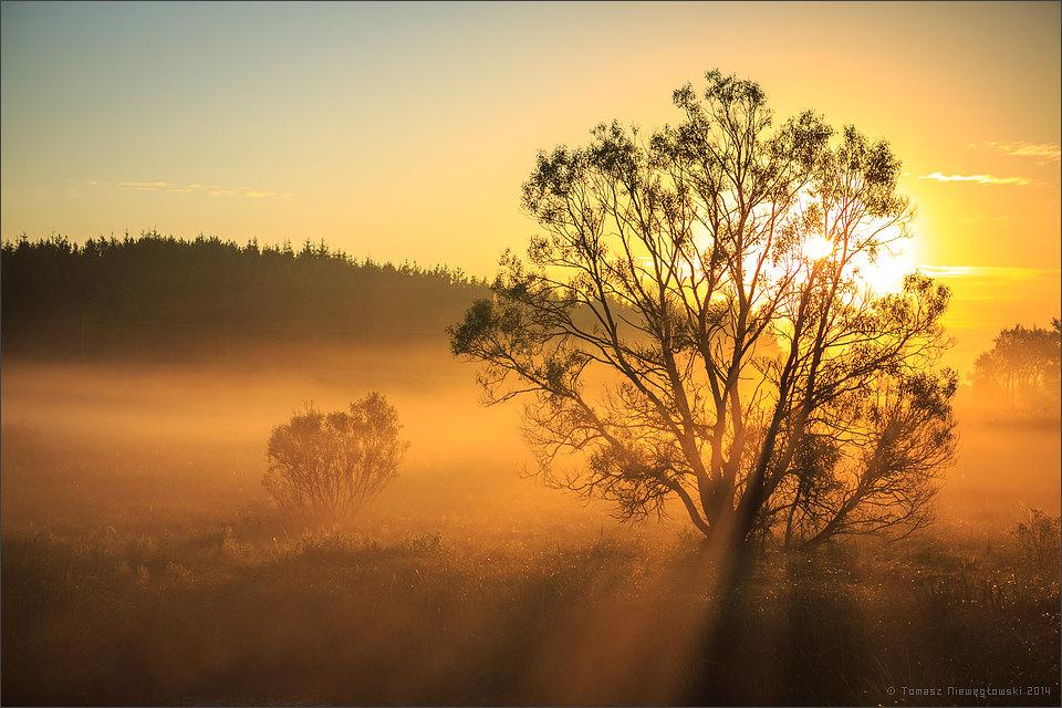 Wschód słońca i mgły na Mazurach Garbatych