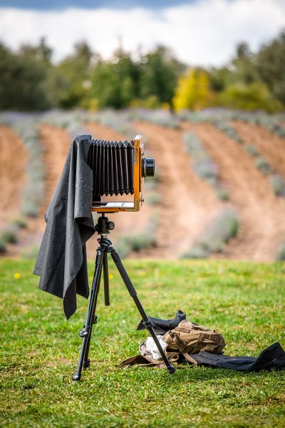 Warsztaty fotograficzne mokry kolodion